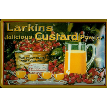 Larkins -(20 x 30cm)
