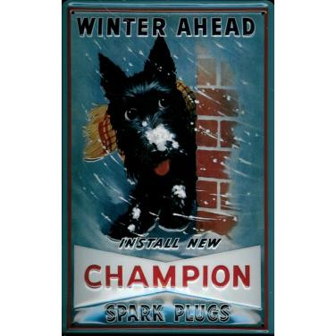 Winter ahead-(20 x 30cm)