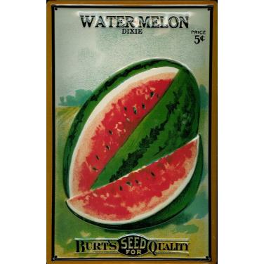 Burt's Water Melon  -(20 x 30cm)